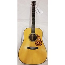 Martin Bluegrass 16 Acoustic Guitar