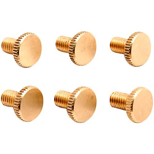 Floyd Rose Brass Fine Tuning Screws (6)