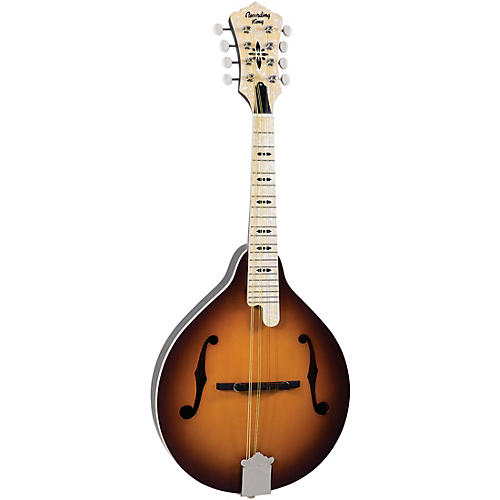 Recording King Century33 Limited Edition RAC-9-TS Mandolin #3