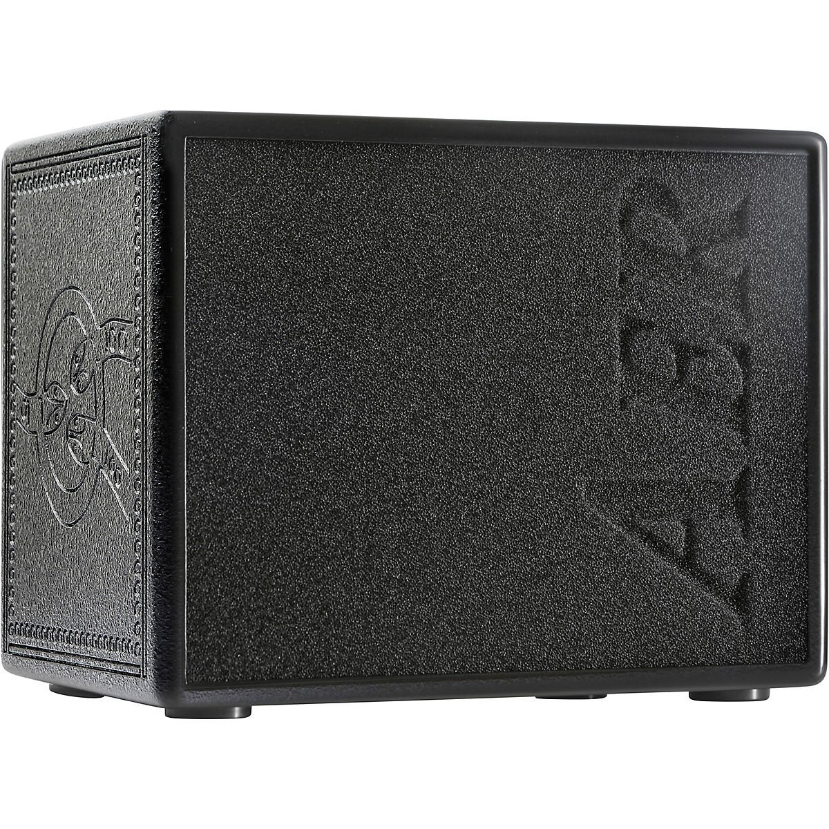 AER Compact 60/4 TE 60W 1x8 Acoustic Guitar Combo Amp