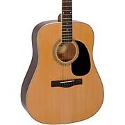 D120BK Dreadnought Acoustic Guitar Natural
