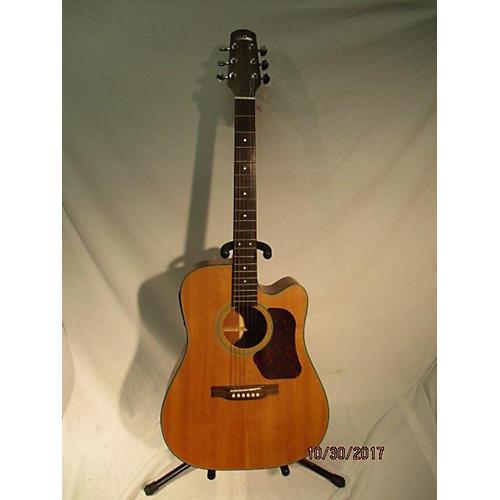 Walden D550TCP Acoustic Guitar