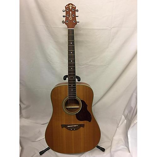 Carter D6 Acoustic Guitar