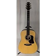 Walden D710 Acoustic Guitar