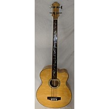 Michael Kelly DRAGONFLY 4 Acoustic Bass Guitar