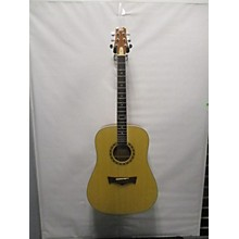 Peavey DW-2 Acoustic Guitar