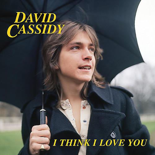 Alliance David Cassidy - I Think I Love You