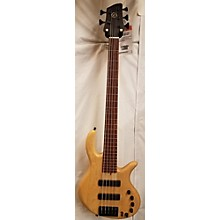 Elrick E-volution 5 Electric Bass Guitar