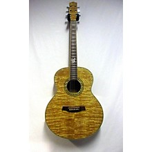 Ibanez EW20A Acoustic Guitar