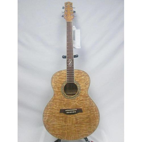 Ibanez EW20ASN Acoustic Guitar