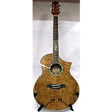 Ibanez EW20SGE Acoustic Electric Guitar