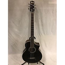 Ibanez EWB205WWENT Acoustic Bass Guitar