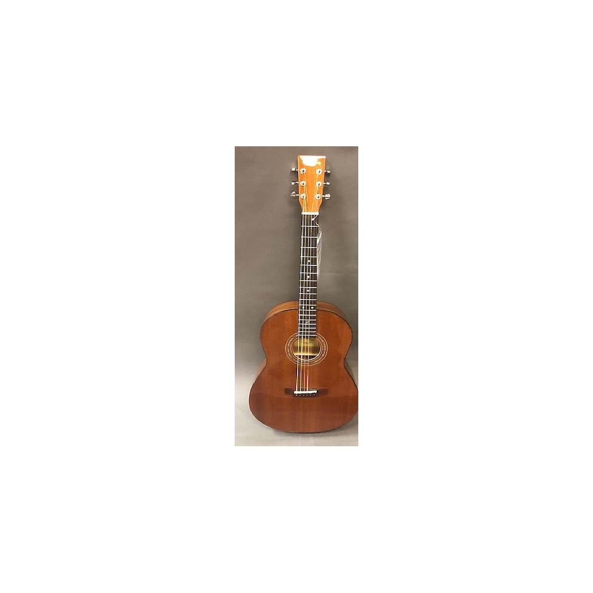 Zager Easy Play Parlor E/n Acoustic Electric Guitar