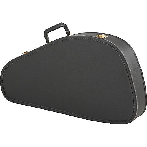 Rhythm Band Economy Chromaharp Case