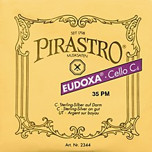 Pirastro Eudoxa Series Cello G String