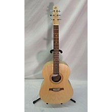 Seagull Excursion Folk SG ISYST Acoustic Electric Guitar