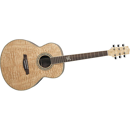 ibanez exotic wood ew20as acoustic guitar guitar center. Black Bedroom Furniture Sets. Home Design Ideas