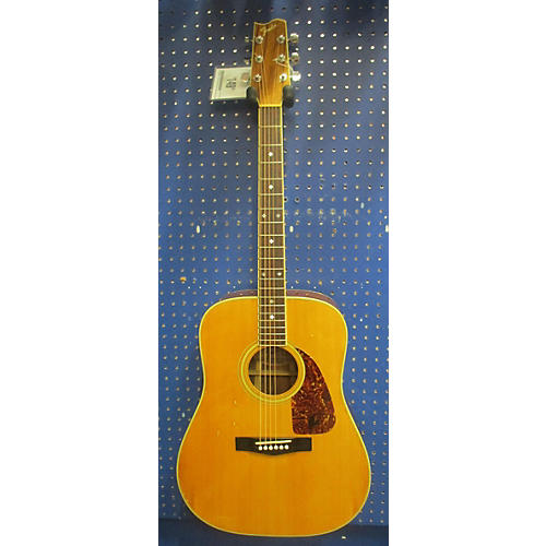 Fender F-250 Acoustic Electric Guitar