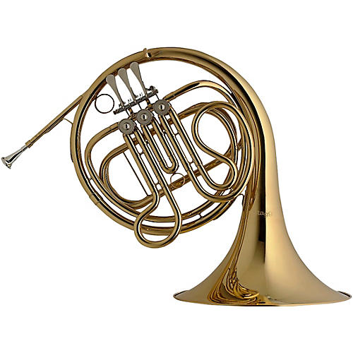 Stagg F FRENCHHORN,3ROT.VL.FORM CASE