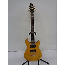 Fernandes FRE-100 Solid Body Electric Guitar