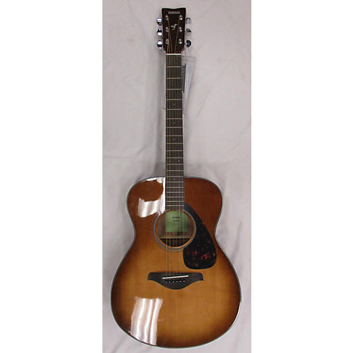FS800 Acoustic Guitar