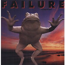 Failure - Magnified
