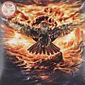 Alliance Falconer - Black Moon Rising thumbnail