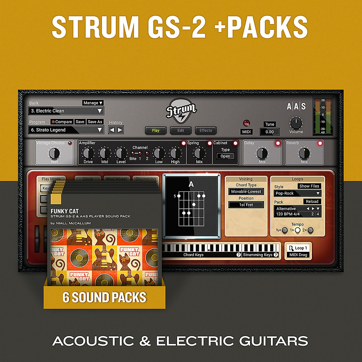 Applied Acoustics Systems Funky Cat - Sound Pack for the Free AAS Player or Strum GS-2 (Download)
