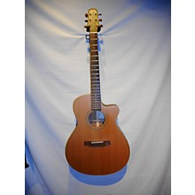 Walden G1070CEQ Acoustic Guitar