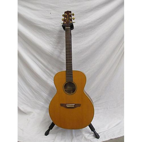 Takamine G40 Acoustic Guitar