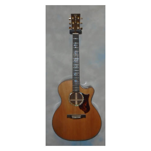 Martin GPCPA1 Acoustic Electric Guitar