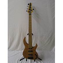 Modulus Guitars Genesis Electric Bass Guitar