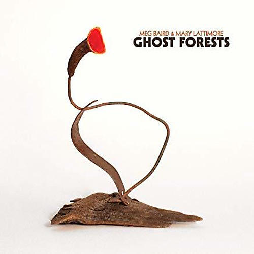 Alliance Ghost Forests