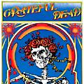 WEA Grateful Dead - Grateful Dead (Skull and Roses) (50th Anniversary Edition) [2 LP] thumbnail