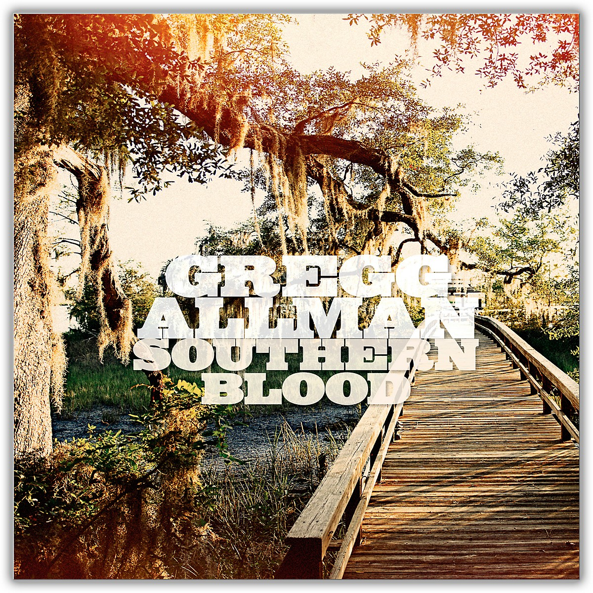 Universal Music Group Gregg Allman - Southern Blood Limited Edition Vinyl LP