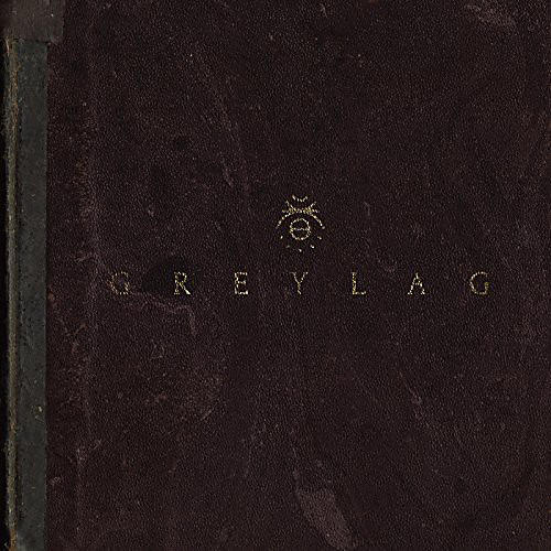 Alliance Greylag - Greylag