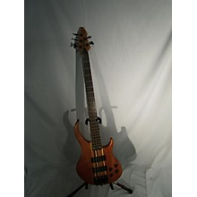 Peavey Grind BXP 5 String Electric Bass Guitar