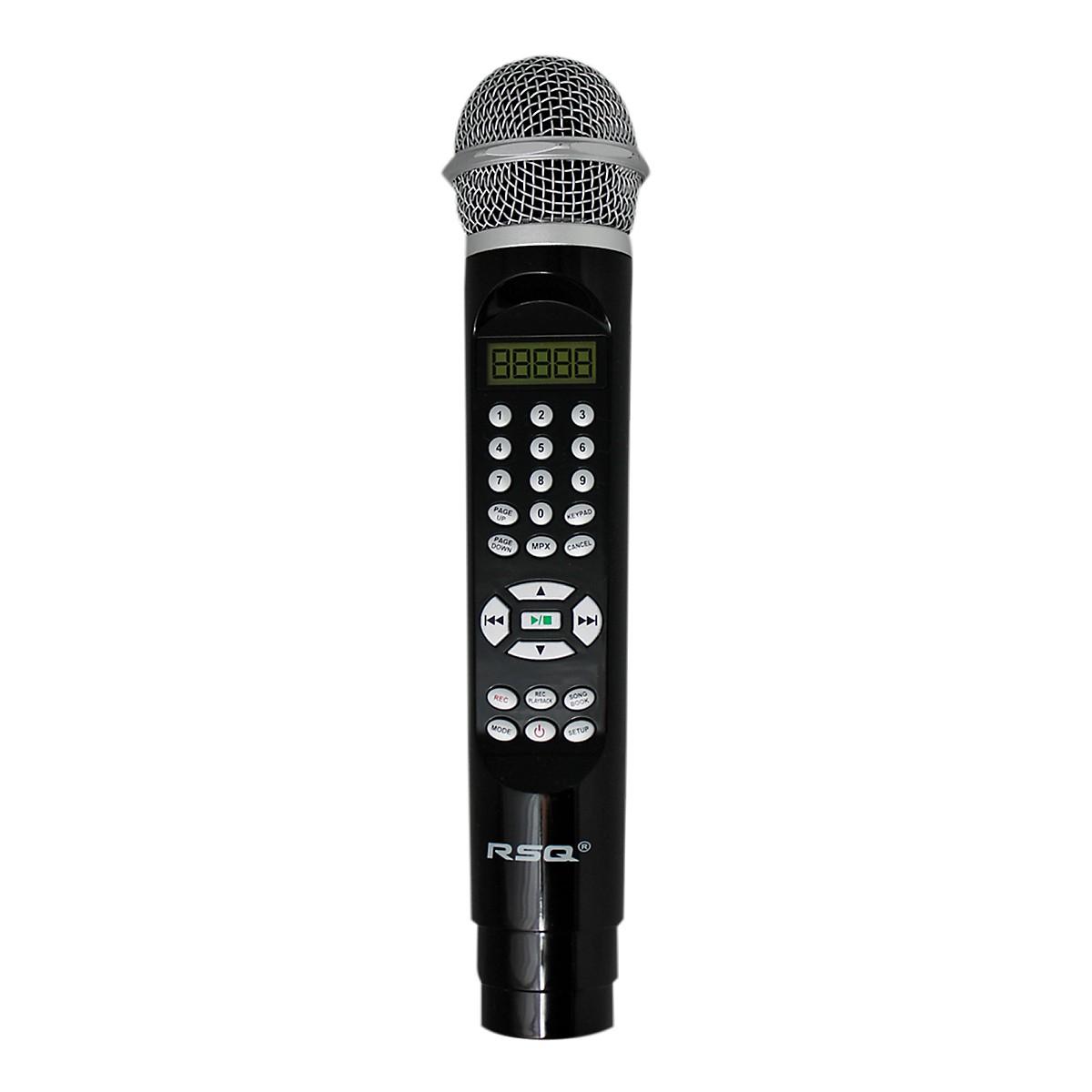 RSQ HSK-202 Microphone Karaoke Player