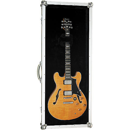 RockCase by Warwick Hollow Electric Guitar Plexiglas Display Case