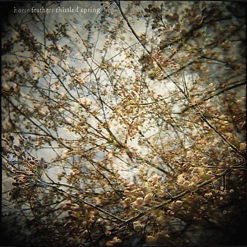 Alliance Horse Feathers - Thistled Spring