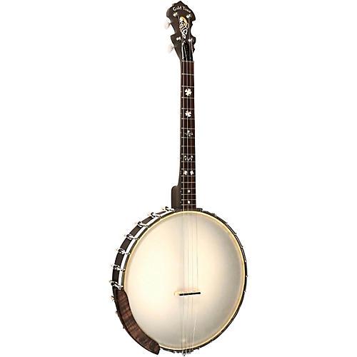 Gold Tone IT-17 Irish Tenor Banjo