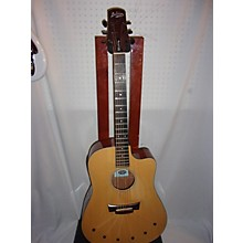 Babicz Identity DCMH-06 Acoustic Electric Guitar