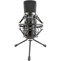 Cad Gxl2600usb Large Diaphragm Usb Studio Condennser Microphone