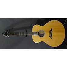 Breedlove J20 MP Acoustic Electric Guitar