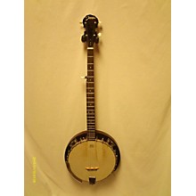 Johnson JB 110 Banjo