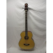 Johnson JG-770-BE Acoustic Bass Guitar