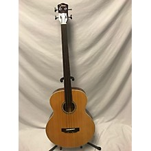 Johnson JGB52 Acoustic Bass Guitar