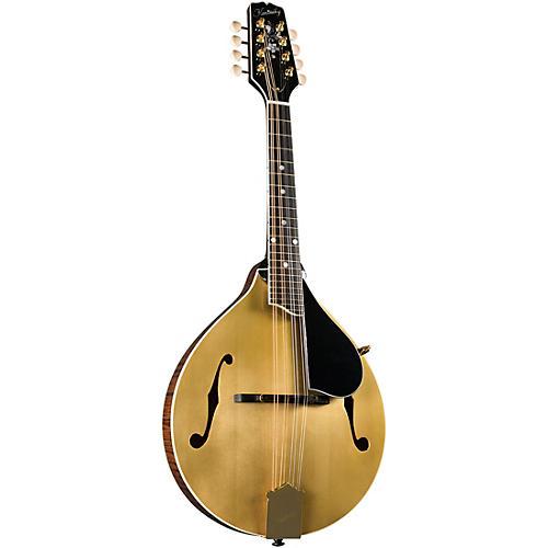 Kentucky KM-508 Artist A-Model Mandolin - Gold Top