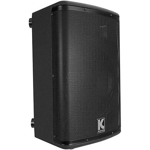 Kustom PA KPX10 Passive Monitor Cabinet