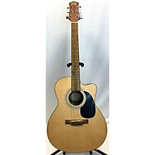 Laurel Canyon LA100 Acoustic Guitar